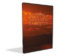 Nature Returns to Emiquon - DVD